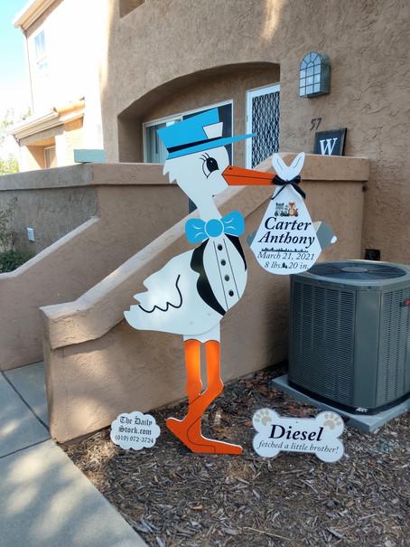 The Daily Stork ~ 619-972-3724 ~ San Diego, Ca ~ Boy Stork Yard Sign