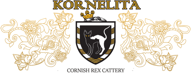 logo_full CRX1.png