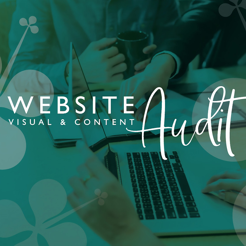 Website Visual & Content Audit