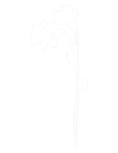 flowers-side.png