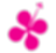 icon-pink.png