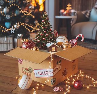 Santa-Hildegarde.jpg