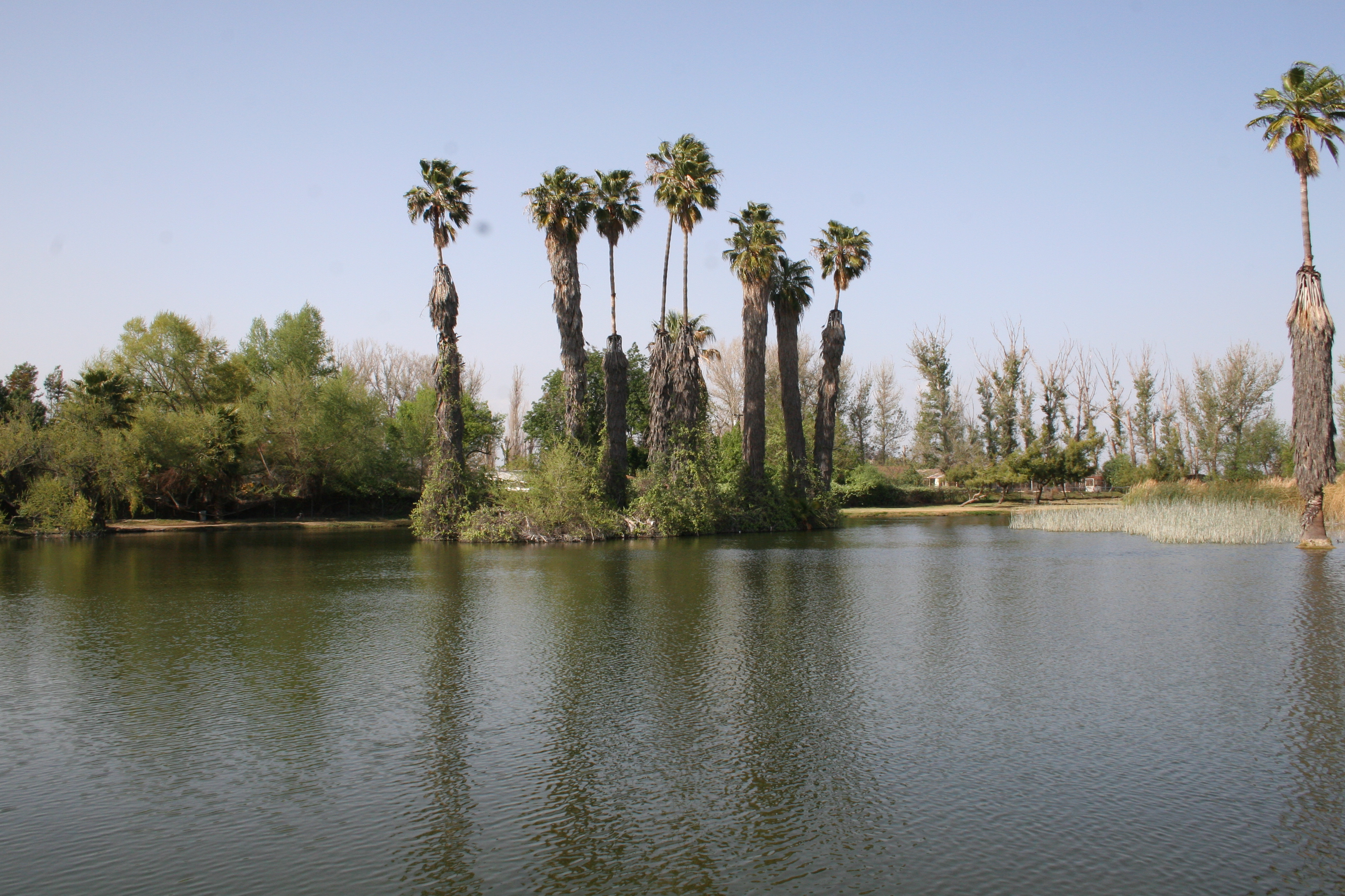RJ Park Lake