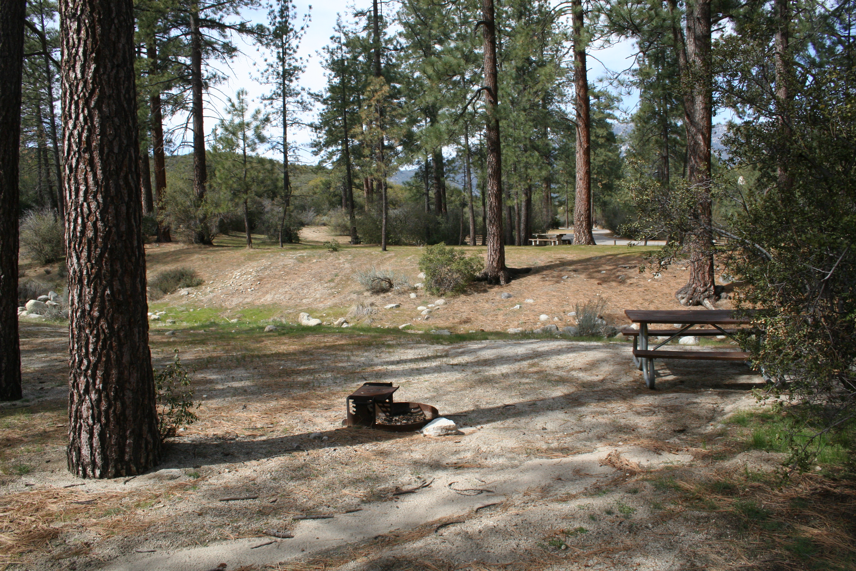 Campsite at Hurkey Creek