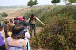 Children on a Nature Ed excursion