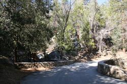 Scenic Idyllwild trails