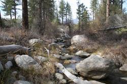 Creek at Hurkey Creek Park