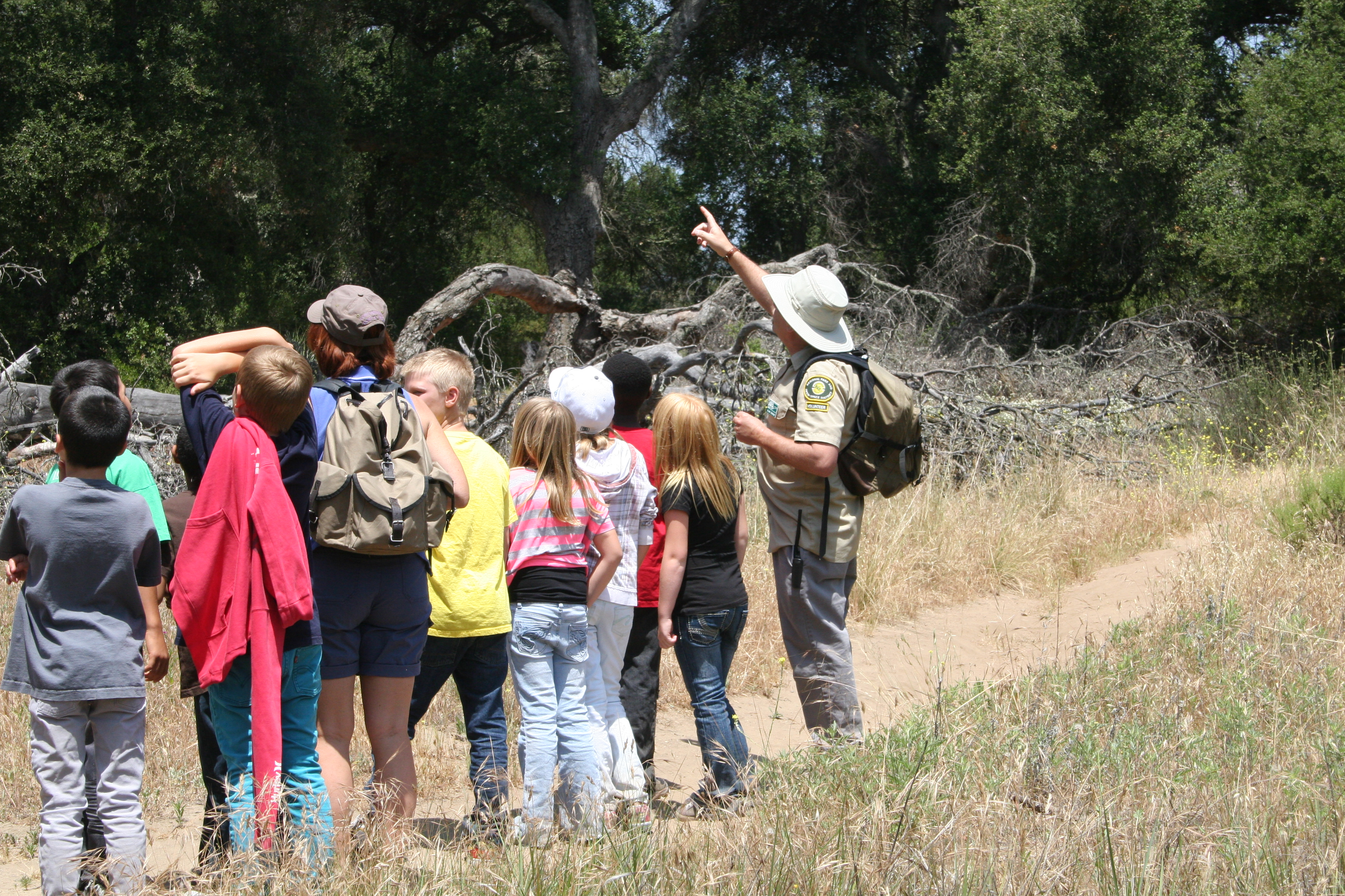 Kids take a guided nature walk