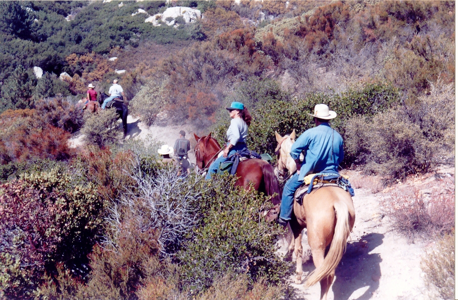 Riders along McCall trails