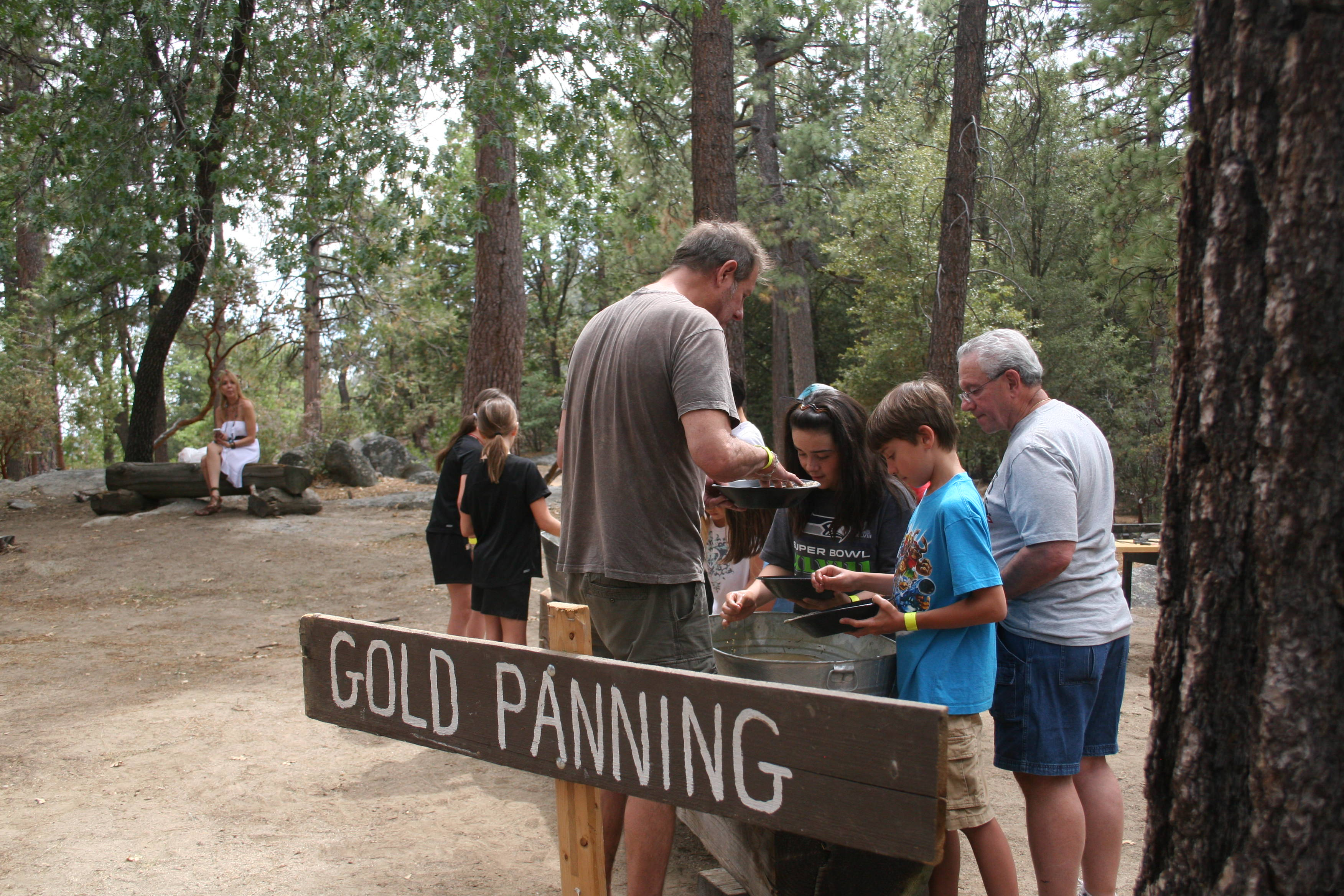 Panning for gold among the pines