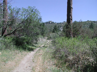 Cold Water Trail 4-29-08 for DN 008.jpg