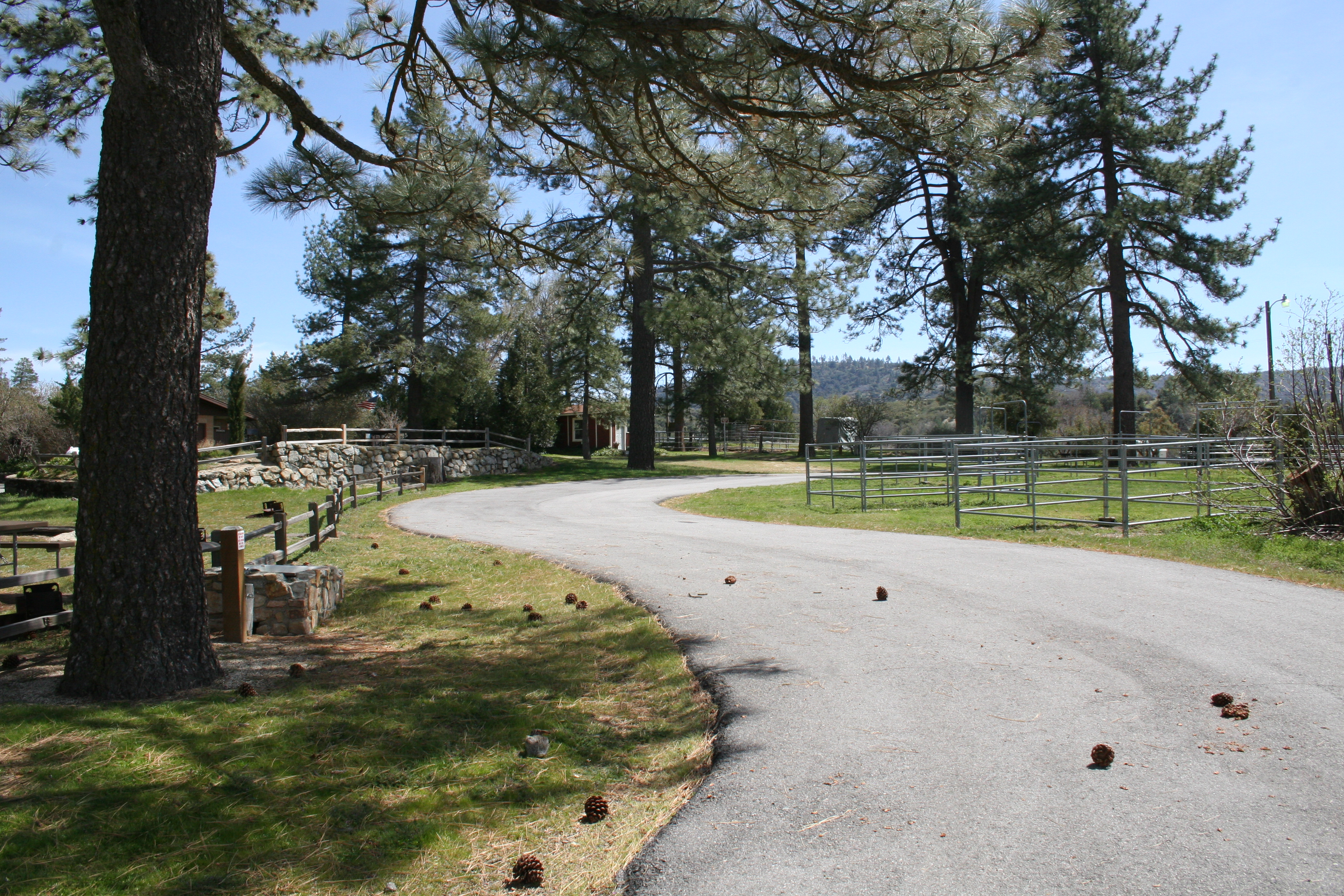 Horse pens at McCall