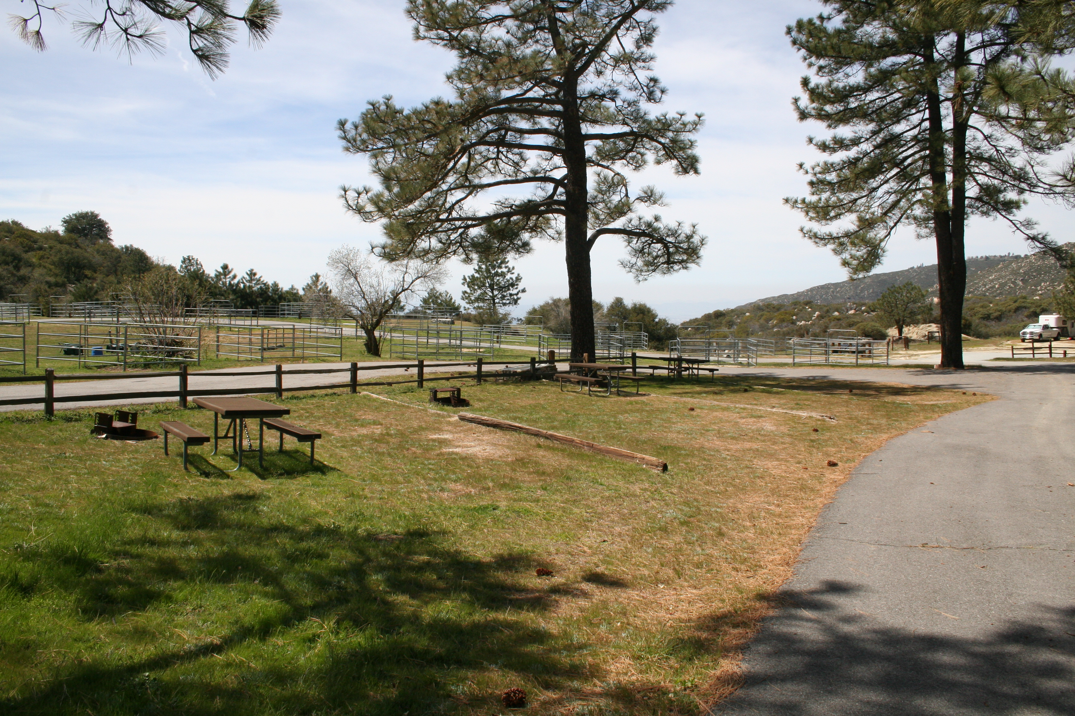 Scenic picnic areas at McCall