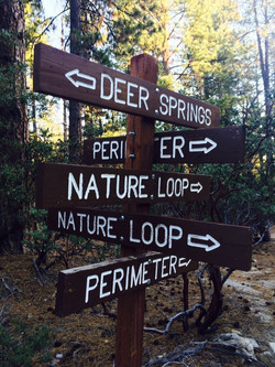 Trails signs at Idyllwild