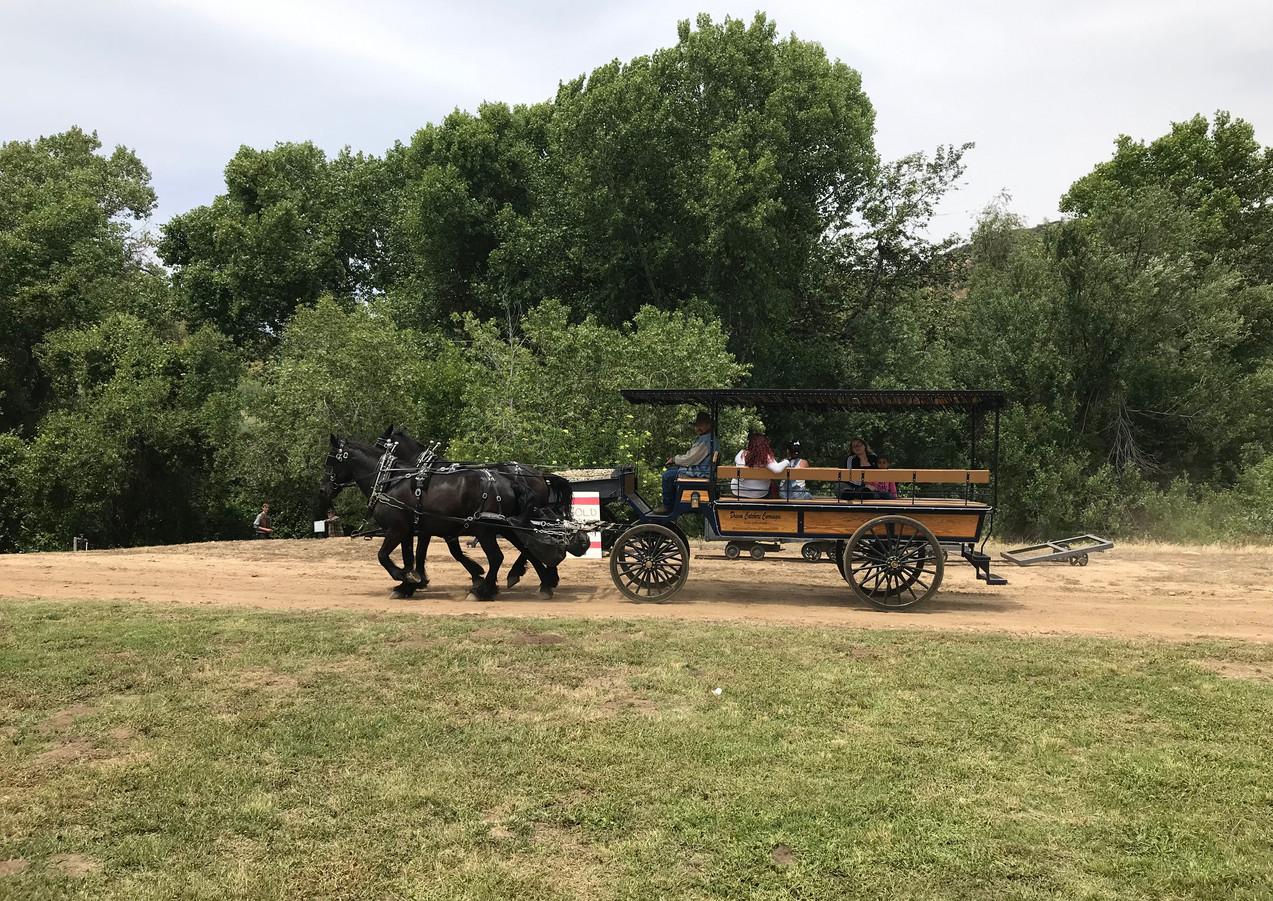 Horsedrawn carriage ride at Gilman