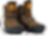 pair hiking boots.png