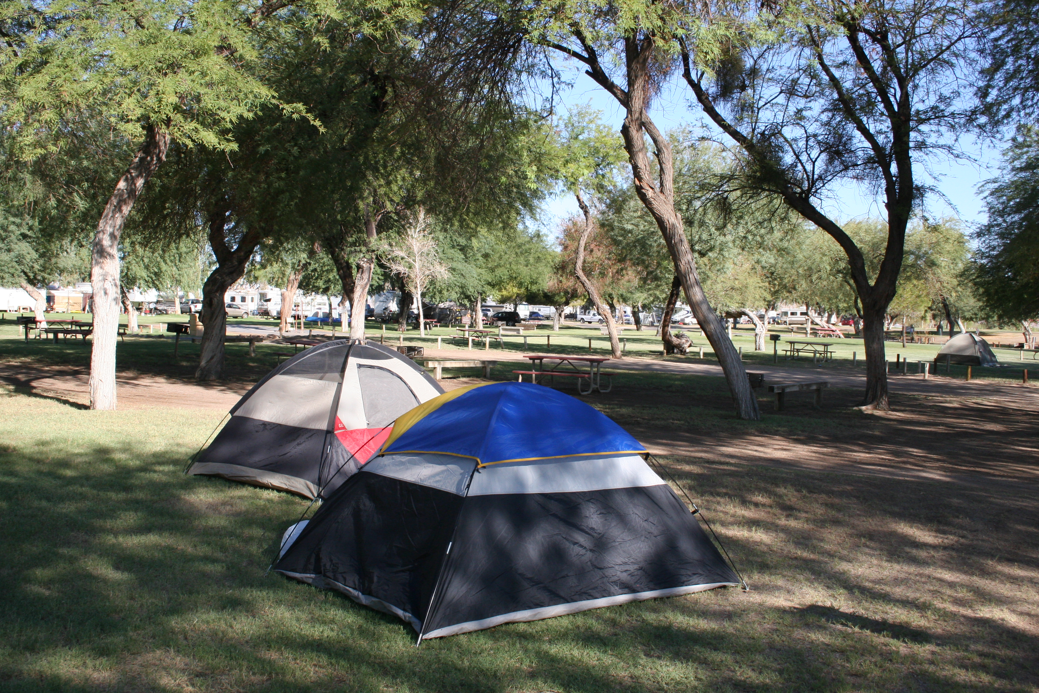 Tent camping at Mayflower Park