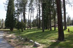 Scenic drive at Hurkey Creek