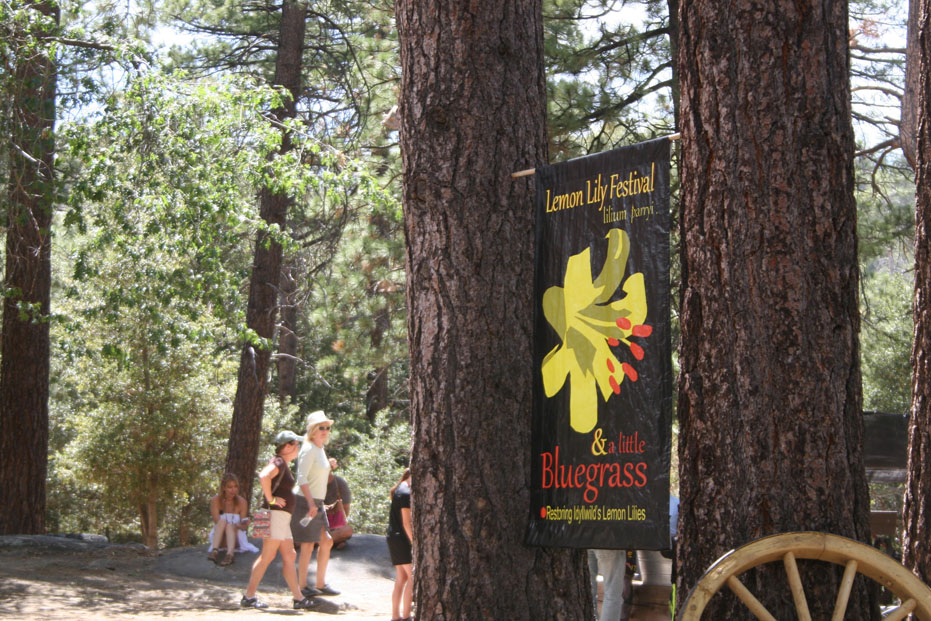 Lemon Lilly Festival in Idyllwild