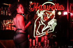 Seduction Burlesque - Live with Me