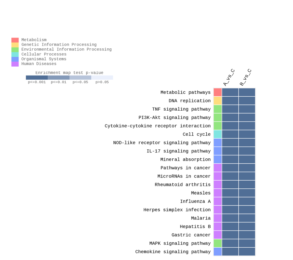 KEGG_Enrichiment_heatmap_sorted.png