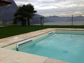 skimmer-piscine.jpg