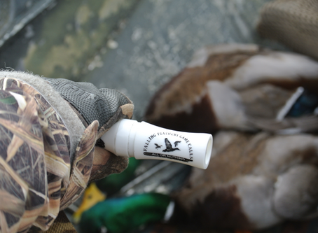 Finding the Right Duck Call