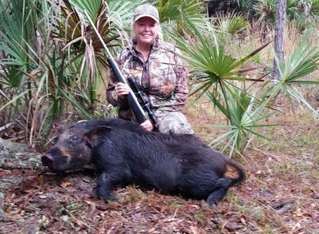 Wild Hog Pulled Pork