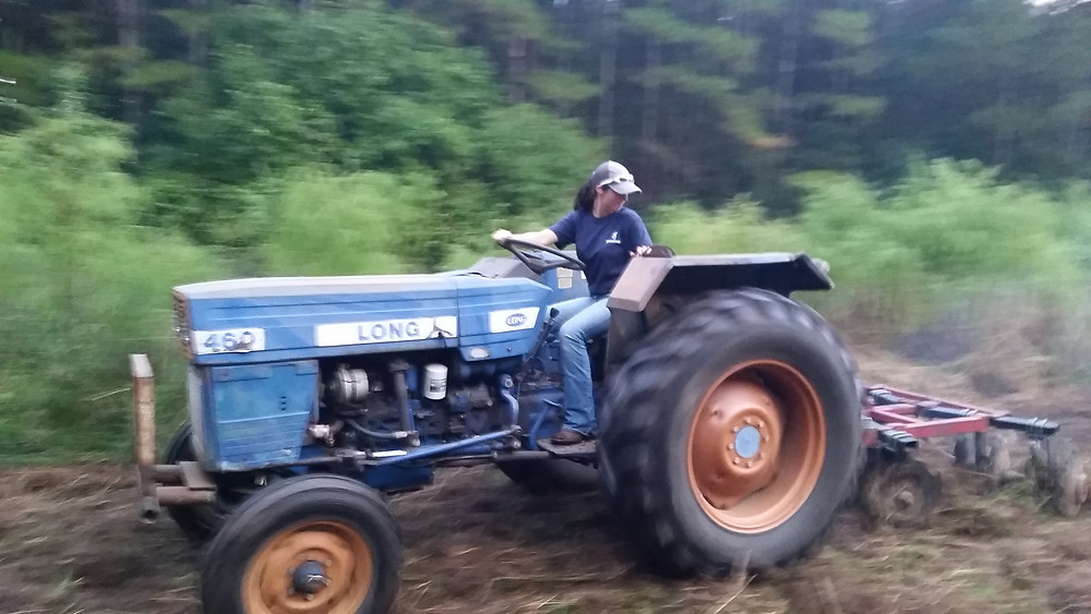 Disking fields for food plots