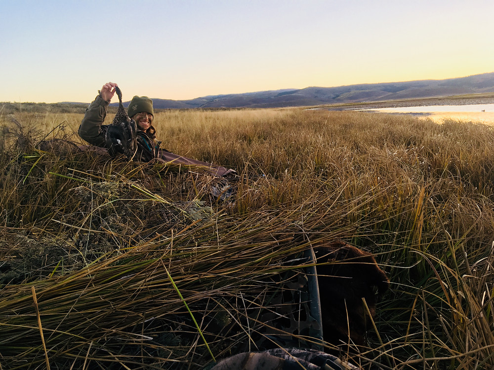 Hunting from a layout blind