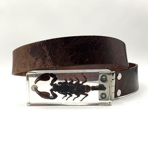 Scorpio belt