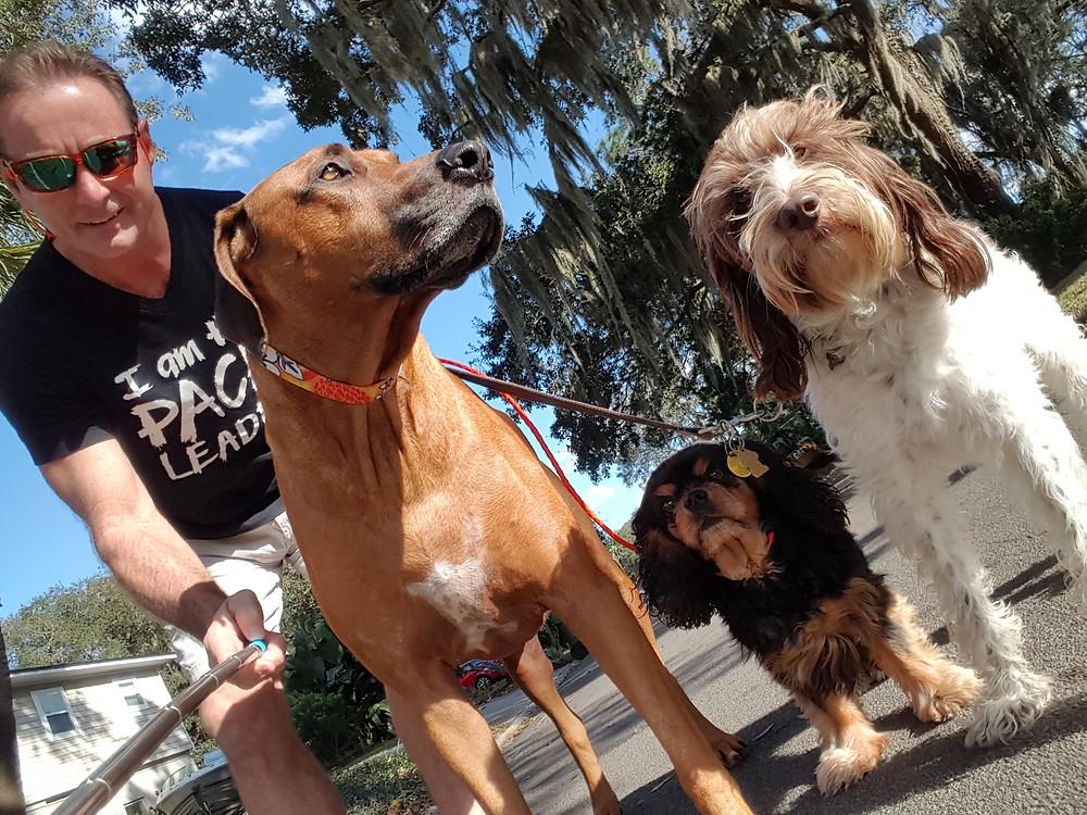Greg, Koa, Marley and Maya