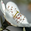 Thumbnail: Manukaöl naturrein, ätherisch 10ml