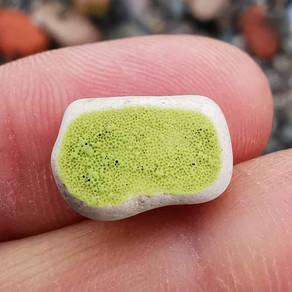 Green Coastal Finds