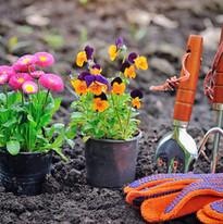 Ready to garden?