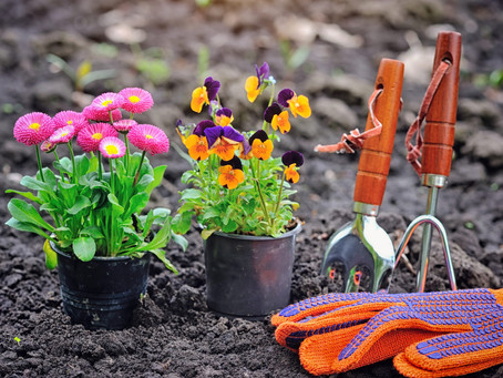START THE YEAR OFF RIGHT - PREPARE YOUR YARD FOR SPRING
