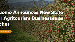 NYS Covid-19 Fall Business Guidelines Announced