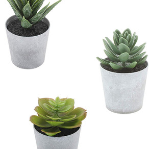 Fake Plants - 3 Piece Set