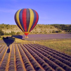 montgolfière et lavande