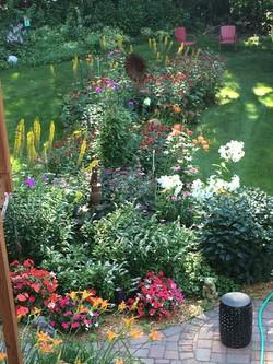 Lynn's garden