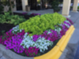 Summer garden provides great curb appeal.