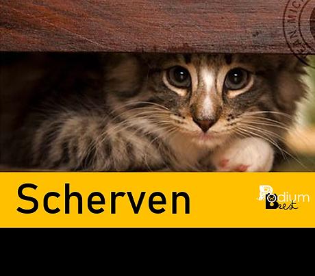Scherven.png