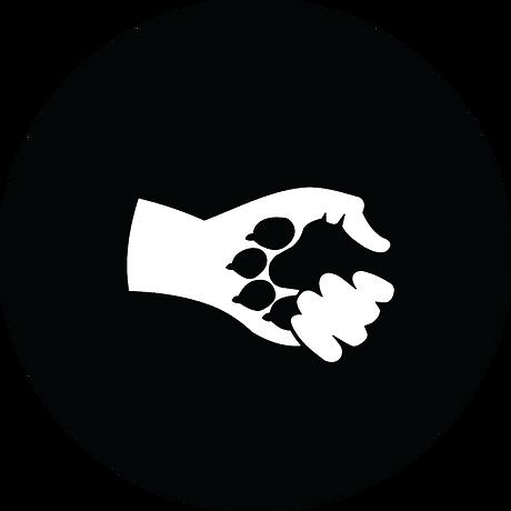 wolvenkinderen logo.png