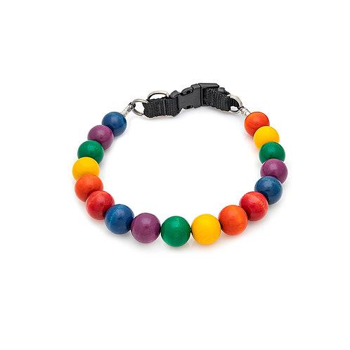 C24 Rainbow (04-16-39-23-33-19)