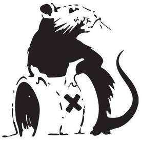 Du poison anti rats utilisé illégalement et à grande échelle à Bruxelles