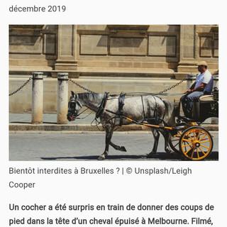 Paris Match, 19 décembre 2019