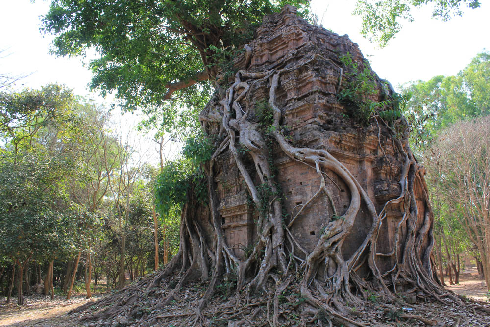 Tempel Sambor Prey Kuk
