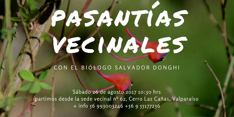 Ven a re-conocer nuestro bosque esclerófilo de Valparaíso.