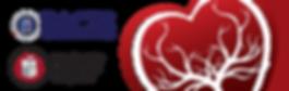 STS2019_logos-2.png