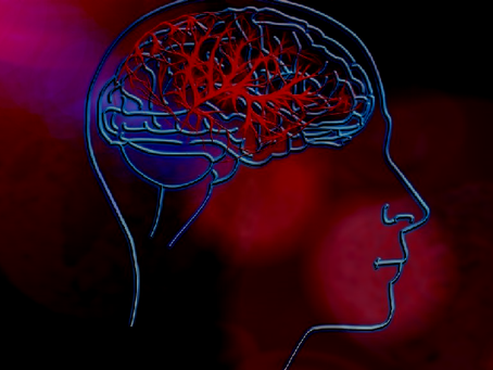Diagnosis and Prognosis of Stroke: A Novel Approach
